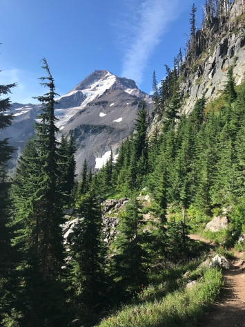 Mount Hood Trail View