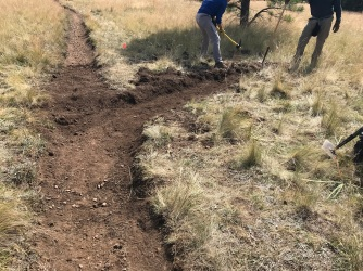 trail work 1